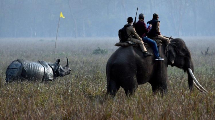 Assam trip with Nilanjan (16)